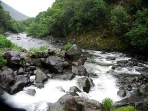 The tumbling waters of a creek in Hawaii.