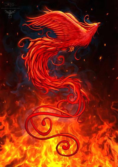 phoenix_design2_background_by_amorphisss-d7cvig9